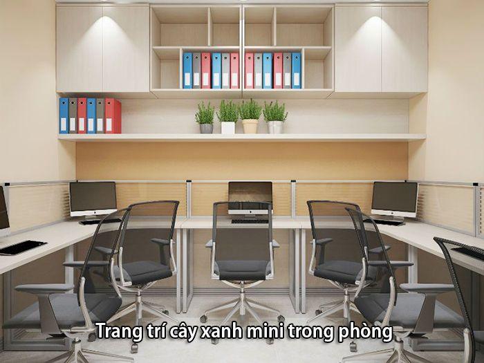 Sử dụng cây cảnh mini trang trí cho văn phòng