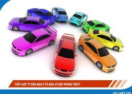 Tuổi Giáp Tý nên mua ô tô màu gì hợp phong thủy?